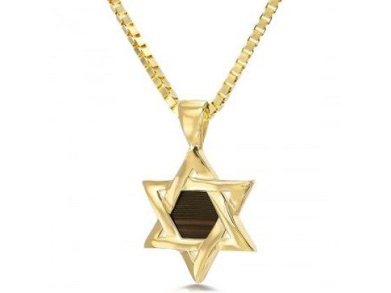 Buy 14K Gold Whole Bible Nano Jewelry Star of David Pendant | Israel-Catalog.com